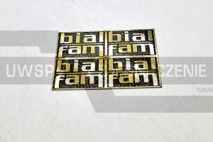 Tabliczka z logotypem - logo - mosiądz - UWSP ZJEDNOCZENIE Toruń